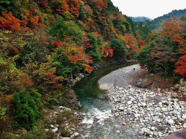 里にある臨済宗永源寺の紅葉は有名ですが、奥永源寺の紅葉も負けてはいません。